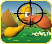 Duck Shooting at Farm